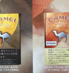 CAMEL NATURAL