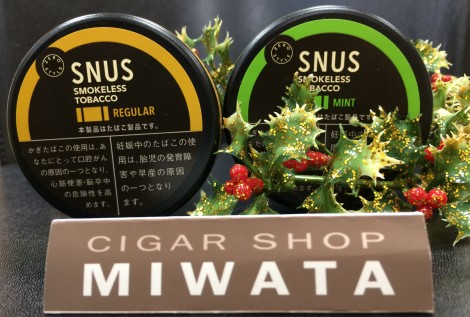 ZERO STYLE SNUS REGULAR_MINT RC