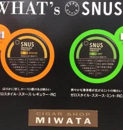 zero style snus campaign
