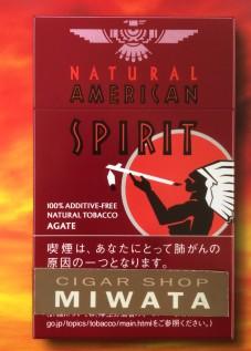 NATURAL AMERICAN SPIRIT AGATE