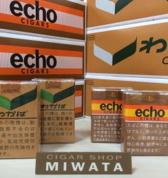 echo & wakaba littlecigar