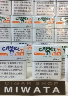 CAMEL REGULAR PLOOM S・CAMEL MENTHOL PLOOM S