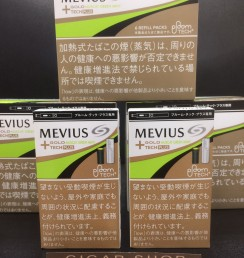 MEVIUS GOLD MUSCAT GREEN MINT