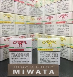 CAMEL MENTHOL RED・CAMEL MENTHOL YELLOW