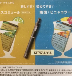 MEVIUS ENERGY MOSCOW MULE MINT PLOOM TECH PLUS・MEVIUS ENERGY PINA COLADA MINT PLOOM TECH PLUS