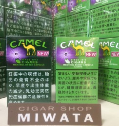 CAMEL CIGARS MENTHOL BERRY CAPSULE BOX・CAMEL CIGARS MENTHOL BERRY CAPSULE LIGHTS BOX