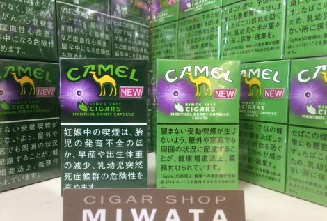 CAMEL CIGARS MENTHOL BERRY CAPSULE BOX・CAMEL CIGARS MENTHOL BERRY CAPSULE LIGHTS BOX