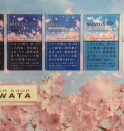 MEVIUS 2021 SKY & Sakura DESIGN